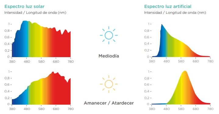 ritmos circadianos espectro
